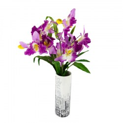 191030_CATTLEYA ORCHID SPRAY MULTICOLOR-B (3)