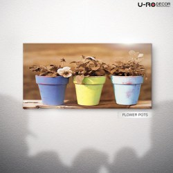 190715_PRINTED_PICTURE_FLOWER_POTS